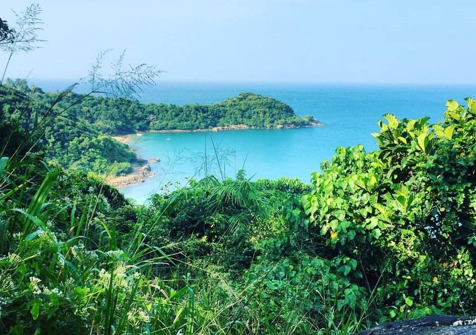 jungle beach 1a